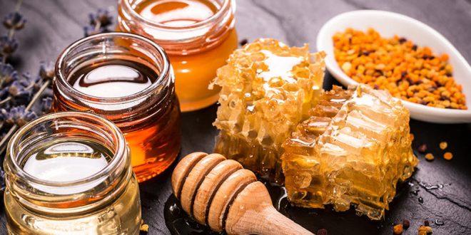 هل العسل علاج للديدان؟