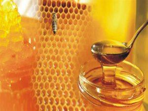 فوائد العسل للدم