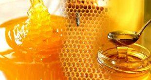 فوائد العسل لحصى للمرارة