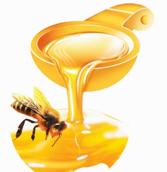 فوائد العسل لخصوبة الرجل