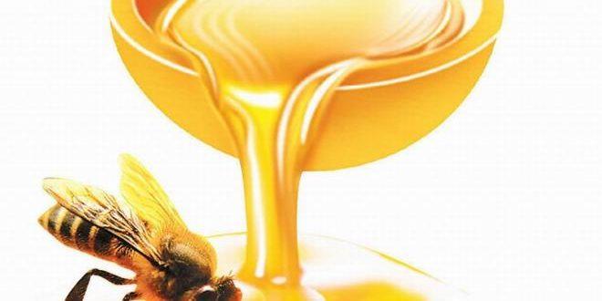 فوائد العسل لضعف التبويض