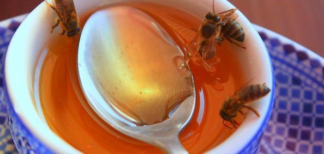 فوائد العسل لعلاج كورونا