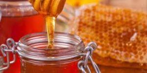 فوائد العسل للديدان