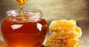 العسل للدماغ