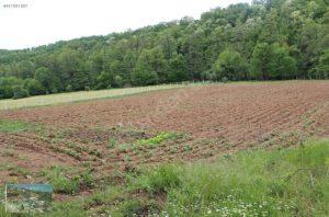 اراضي زراعية للبيع في تركيا
