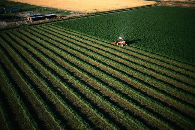 مشاريع زراعية ناجحة في تركيا