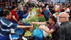 استثمار زراعي في تركيا