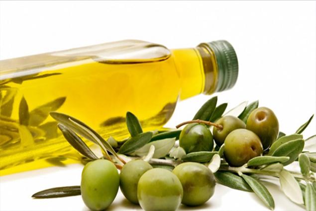 تجارة الزيتون في تركيا