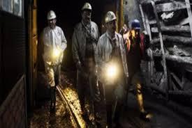 شركات بيع الفحم في تركيا