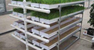 مشاريع زراعية في تركيا