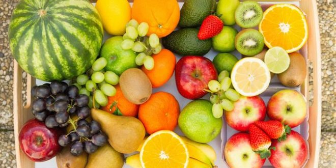 تصدير الفواكه من تركيا